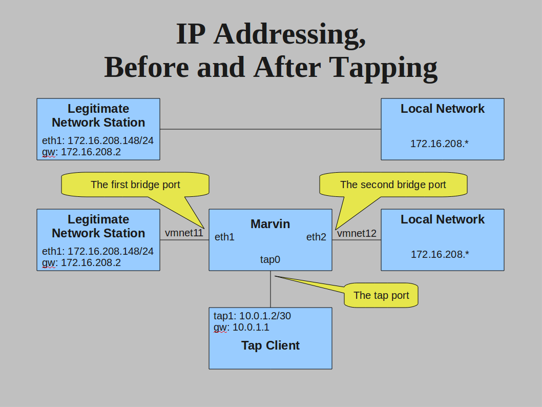 Links Before and After Tapping